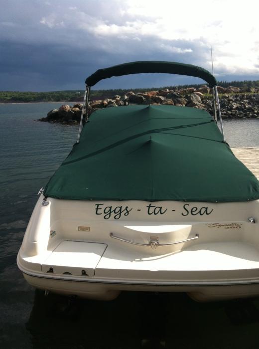 Eggs ta sea